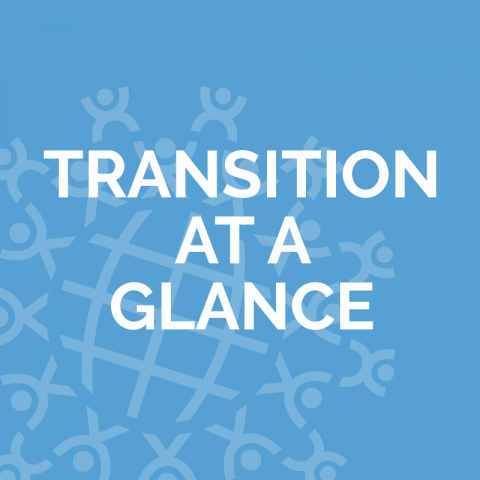 Transition at a Glance